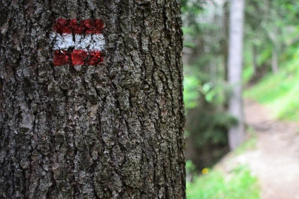 Trail Markers