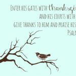 Thankfulness and Everyday Blessings