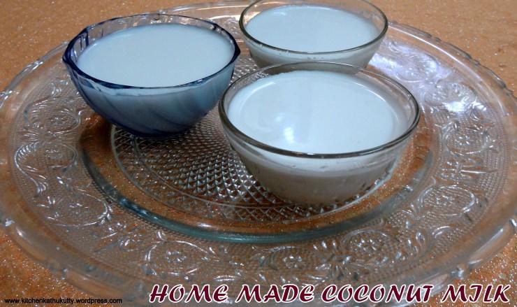 coconut milk making.JPG