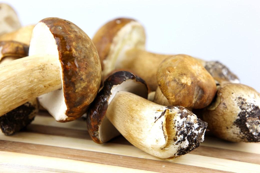 Slikovni rezultat za presente com receita de cogumelo
