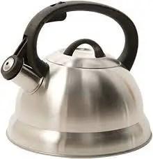 Mr. Coffee 91407.02 Flintshire Stainless Steel Whistling Tea Kettle, 1.75-Quart, Silver