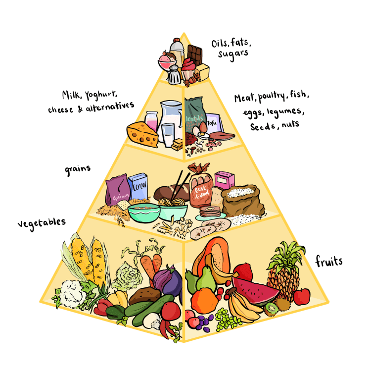 A food pyramid that shows fruits and vegtables at the base, grains above that, followed by pulses, milk products, non veg products, and finally, the oils and sugars.