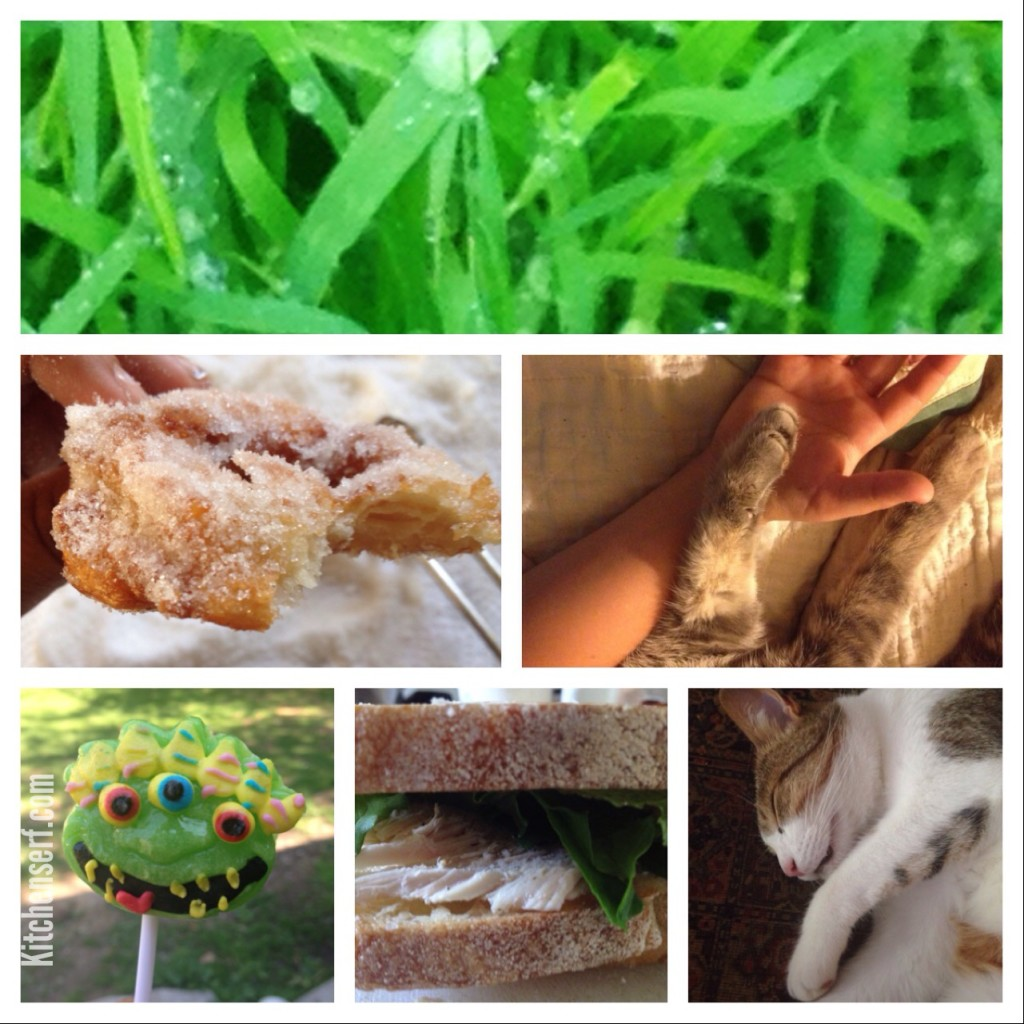 Pics of the Week include photos I took as part of the Fat Mum Slim's photo a day challenge, a really great sandwich I made last weekend with fresh mustard greens and a shot from an upcoming blog post on how to make the best doughnuts of your life.