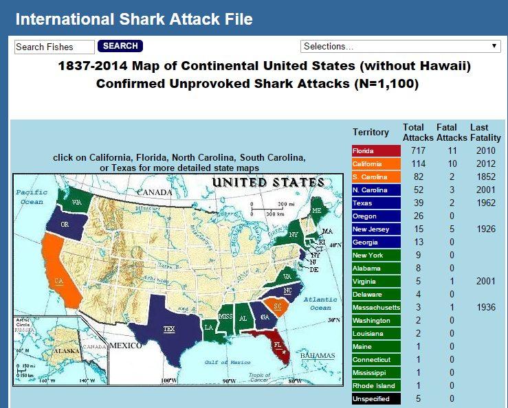 international_shark_file