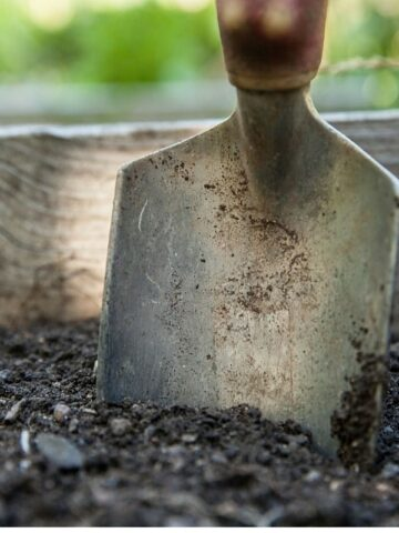 Garden ideas are what you need to get off to a good start with your yard this spring.