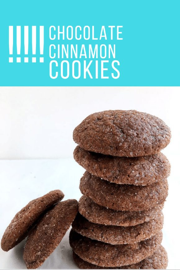 tower of chocolate cinnamon cookies on a white background