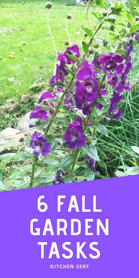 Fall Gardening Tasks (Six That Can't Wait!)