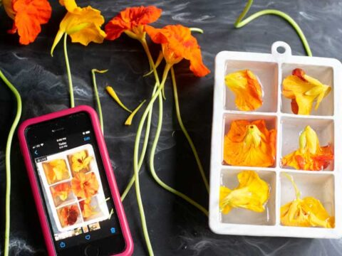 How to Make Flower Ice Cubes
