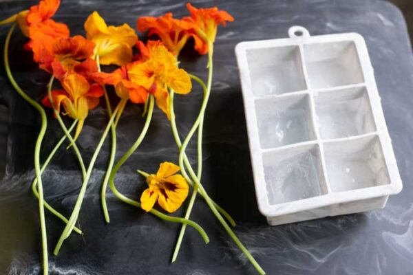 nasturtium flowers next to a square, silicone ice cube tray