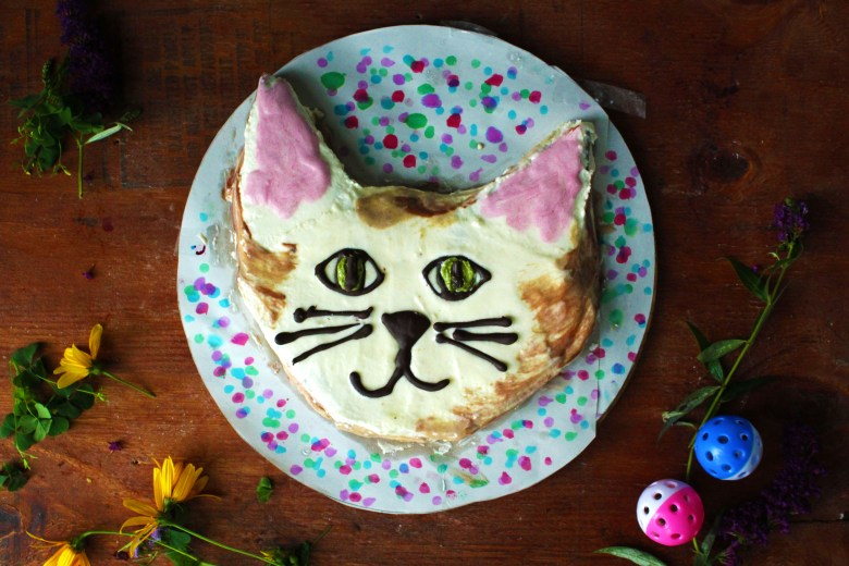 Cat Shaped Cake Chocolate Chip Zucchini Vegan Gluten Free