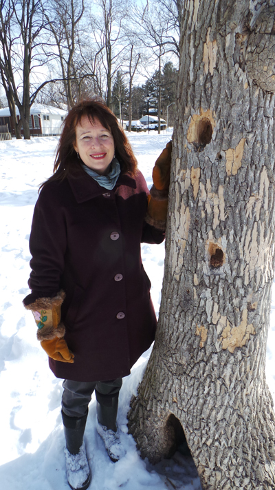 Deb Chapman is concerned about the fate of the trees at Clare Gardens Park in Westboro. Photo by Andrea Tomkins