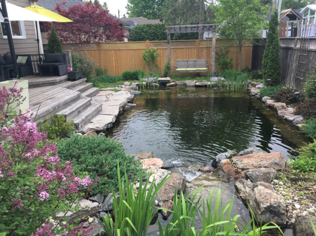 "Westboro's Nadja Becsey knew she wanted her own swim pond when she moved to the area. ""I lived in Germany for twenty years, and it's standard practice there to have what's called a natural swim pool,"" says Nadja."