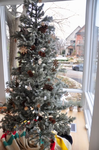 It's a classic Christmas tree at 269 Royal Ave.