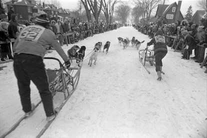 Teams race to the finish during the International Dog Derby in January 1973. Photo CA026036 courtesy of the City of Ottawa Archives