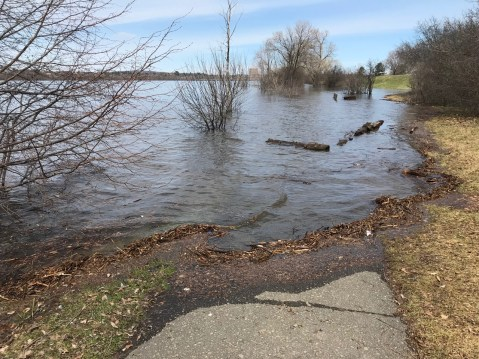 Flooded path just east of Westboro Beach, photo by Andrea Tomkins