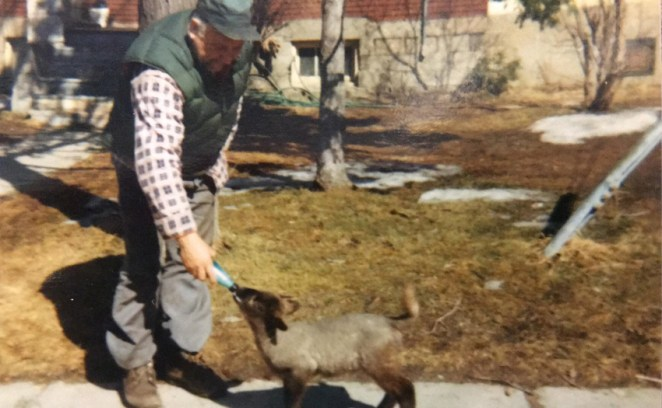 Harry Showler and his little lamb. Photo courtesy of Jane Showler Doyle