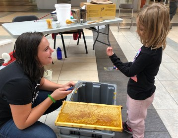 Alvéole bee keeper and young volunteer during honey extraction last summer. Photo courtesy of Nathalie Lavergne