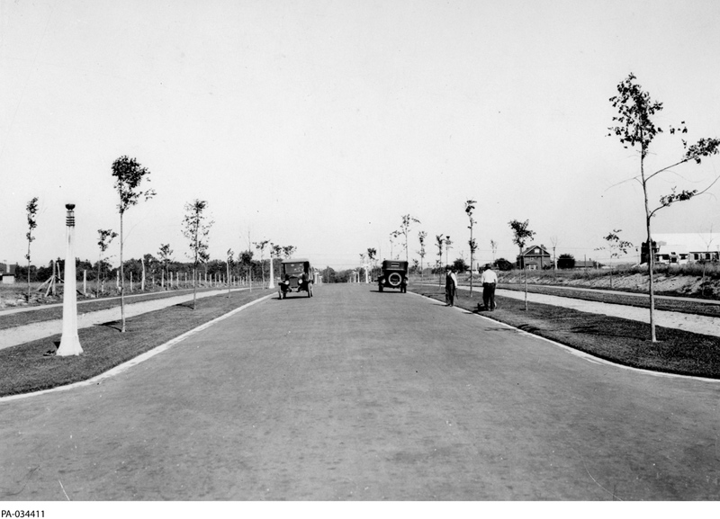 Island Park Drive looking north from approx Iona (Library Archives Canada, PA-034411)