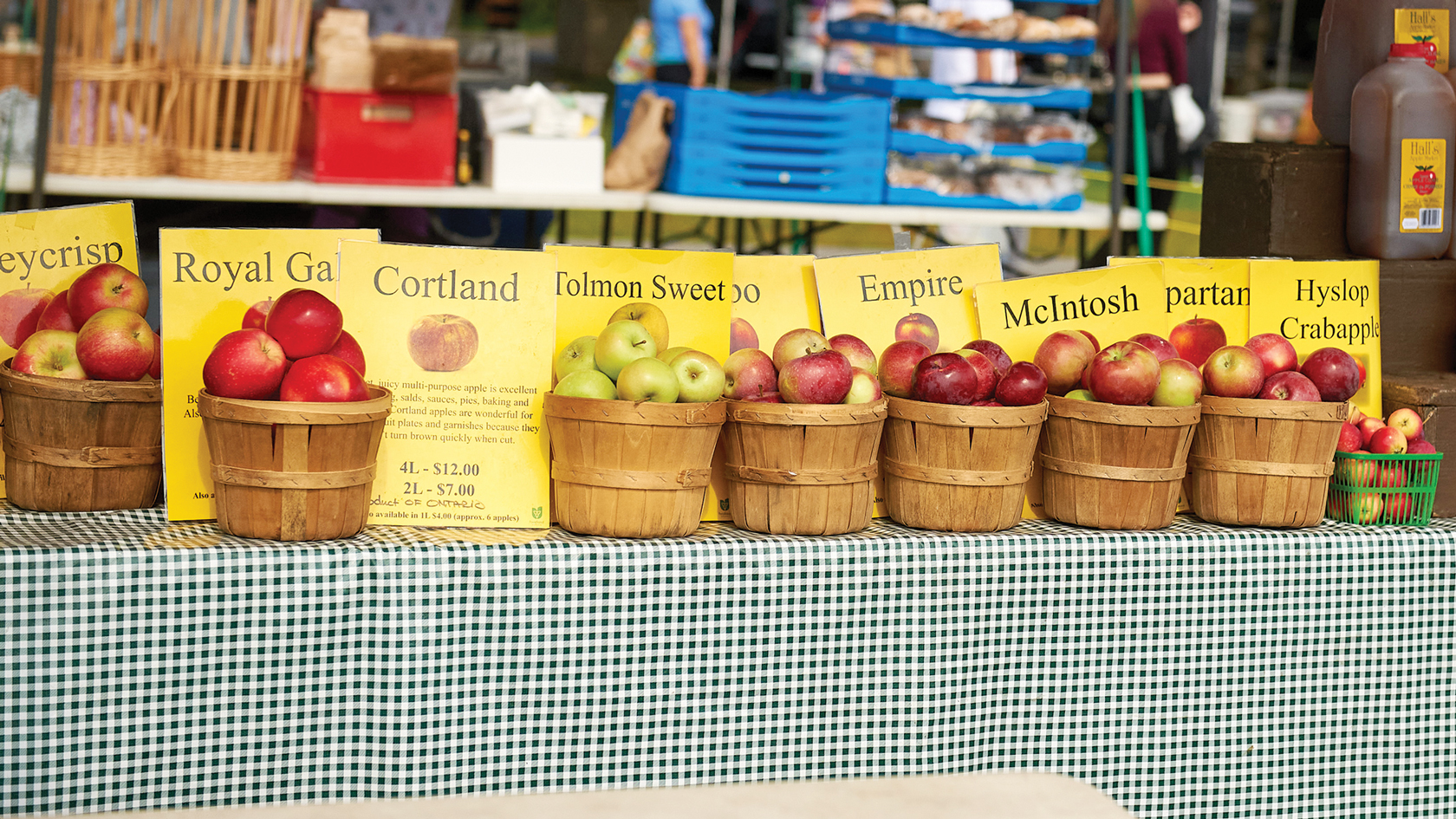 A photo of apples at Hall's market in Westboro.