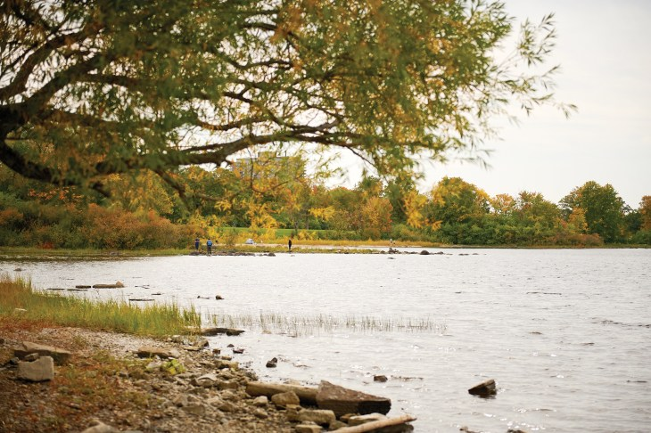 A photo of the river from Westboro Beach in the fall.