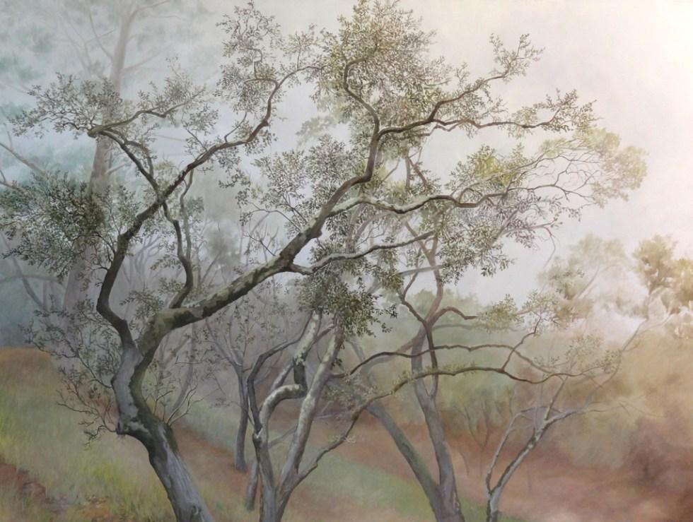 Oaks in Mist - 30 x 40 in. - Oil on Canvas - 2011