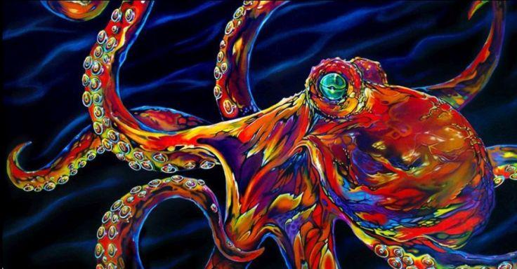 kobasky-octopus_web