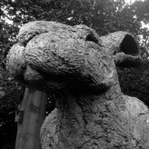 Giant Rabbit Head, YSP
