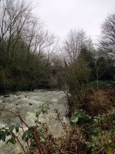 Dearne Valley, Barnsley