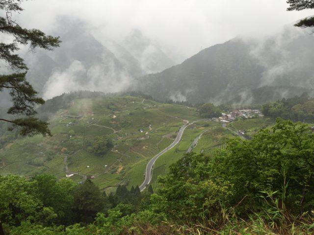 『天空の遊歩道』気軽に秘境気分が味わえる揖斐川町のマチュピチュ
