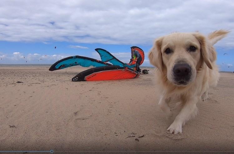 camping-brouwersdam-zeeland-kitesurfen