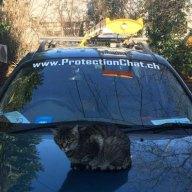 Minouche recommande ProtectionChat.ch