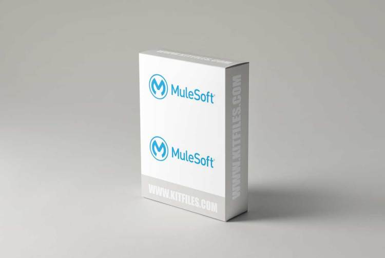 Become The Ultimate Certified MuleSoft Architect – MCIA/MCPA
