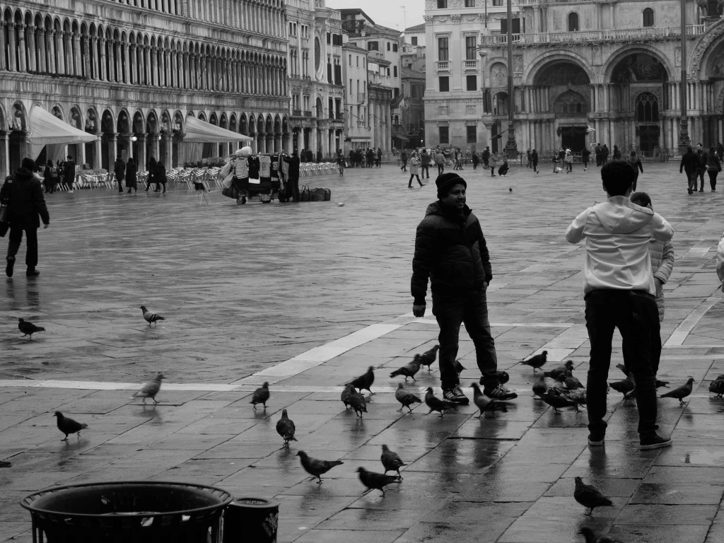 People of Venice; a human city