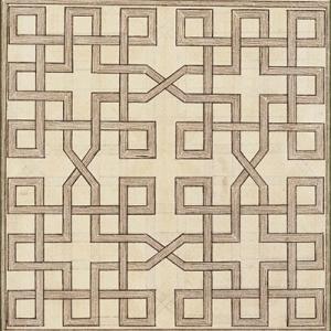 lattice-like illustration