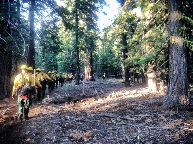 File: Firefighters in yellow safety gear march single-file through the forest. July 29, 2013. (Flickr / California Bureau of Land Management)