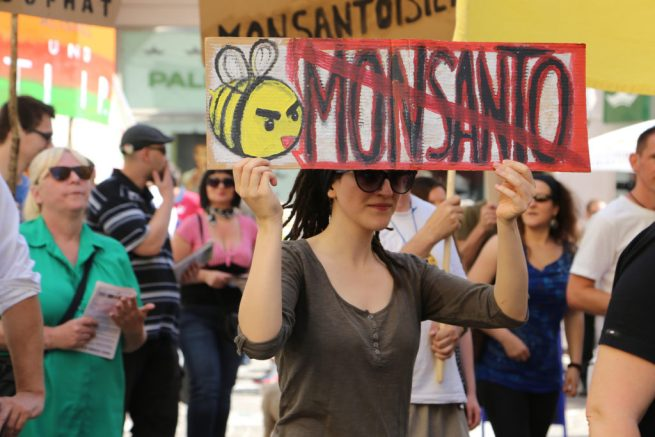 During a German march against the Agribusiness giant Monsanto, a woman carries a NO MONSANTO sign illustrated with a bee. (Flickr / Die Grünen Kärnten)