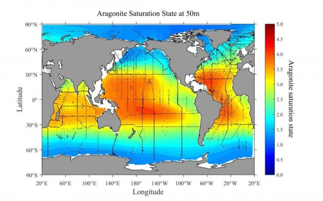 This map shows the global distribution of aragonite saturation at 50 meters depth. The graphic shows areas that are most vulnerable to ocean acidification since they are regions where the saturation of aragonite is lower. Aragonite is a calcium carbonate mineral that shellfish use to build their shells. (NOAA)