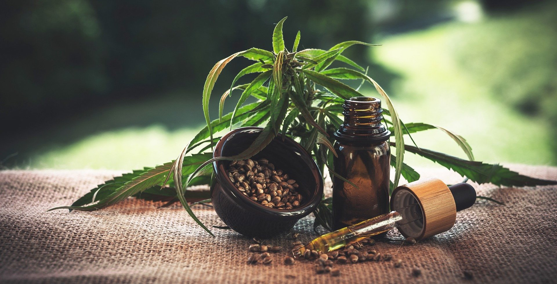 A bottle of generic CBD oil, alongside some hemp leaves and hemp seeds, all sitting on natural-colored hemp fabric.