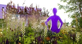 Pride Garden to Support Stonewall Wins Gold Prize from Royal Horticultural Society