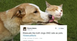 Twitter Users' Hilarious #BisexualFacts to Mark Bisexuality Visibility Week