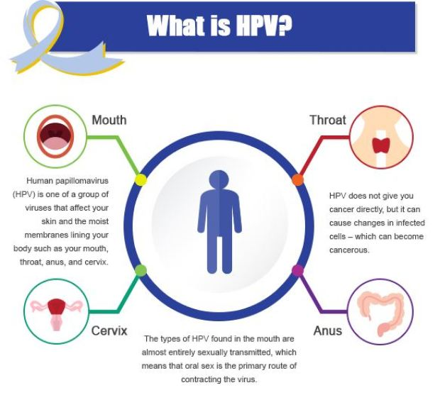 hpv-what-is-it