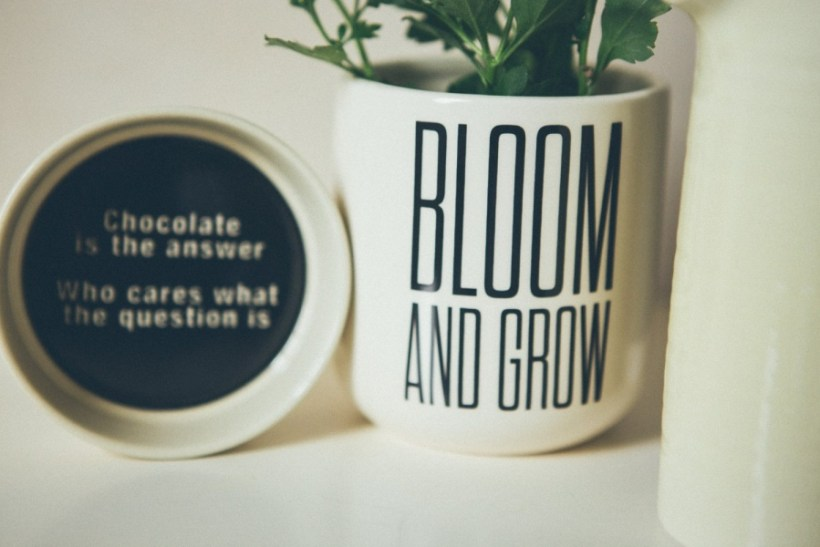 Bloom and Grow Flower Pot