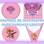 Kit Imprimible de Skye Paw Patrol para descargar gratis