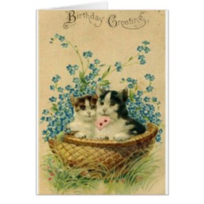 victorian_cat_birthday_greeting_card-r3767e59d499046ab8e58ad85a7edf4b6_xvuat_8byvr_324.2