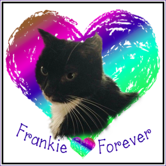 Frankie FOREVER