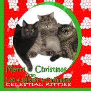 Celestial Kitties 2015 Holiday ECard