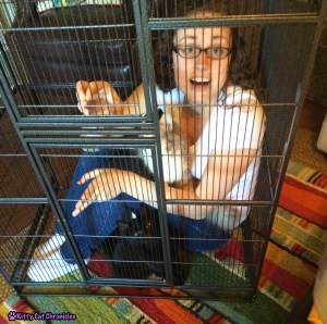 We're all in the cage!