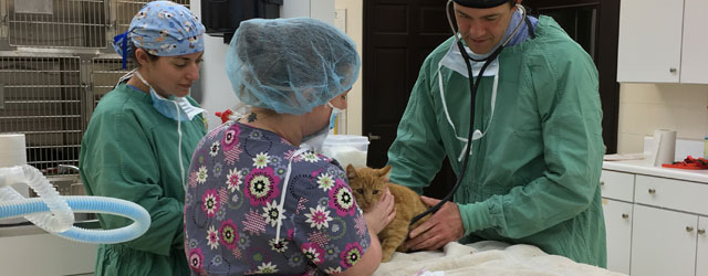 Dr. Butler Caldwell - Our Veterinarian