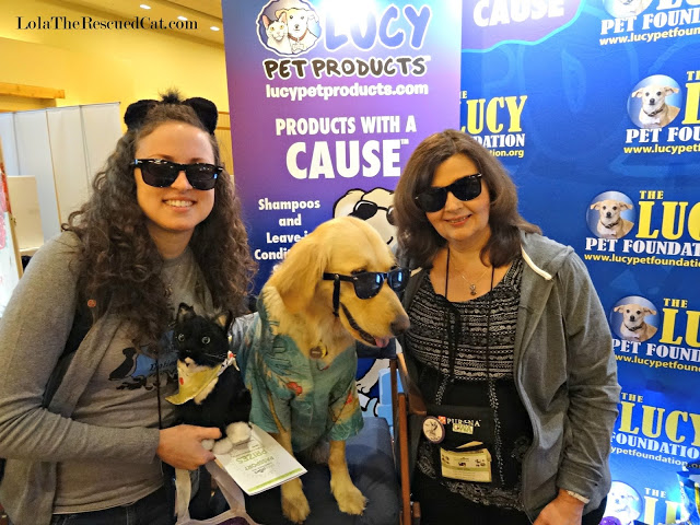 Me and my conference roommate Dawn (Lola the Rescued Cat) with Jack from the Lucy Pet Foundation