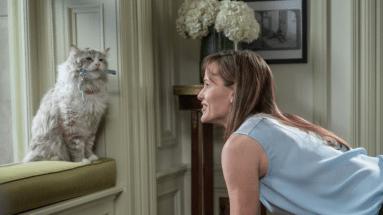 Top 5 Favorite Feline Actors: Mr. Fuzzypants in Nine Lives
